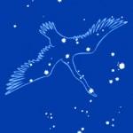 cygnus06_01